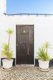 Vintage old doors and vases for plants. royalty free stock photography