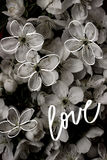 Vintage old flower backgrounds - vintage effect style pictures. Cherry flowers. Monochrome background for text, logo, card, poster Flower texture Stock Photo