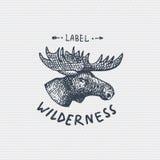 Vintage old logo or badge, label engraved and old hand drawn style wild moose, elk face.  royalty free illustration