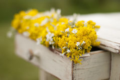 Vintage old table and wild flowers Royalty Free Stock Photo