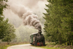 Vintage old train in forest with white smoke Stock Photo