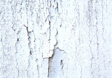 Vintage old white grunge wood paint Royalty Free Stock Photography