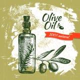 Vintage olive background Stock Image