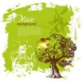 Vintage olive background Royalty Free Stock Photos