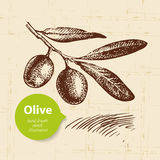 Vintage olive background Royalty Free Stock Images