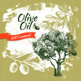 Vintage olive background Royalty Free Stock Photography