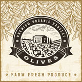 Vintage olive harvest label Royalty Free Stock Photography
