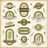 Vintage olive labels set Stock Photo