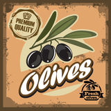 Vintage olive sign Stock Images