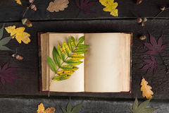 Vintage open notebook with colored autumn leaves over wooden background. Autumn still life. Autumn background Stock Image
