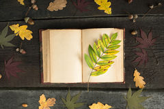 Vintage open notebook with colored autumn leaves over wooden background. Autumn still life. Autumn background Stock Photos