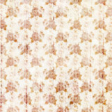 Vintage orange and white grungy flowers and wood grain background design Stock Images