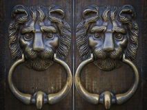 Vintage oriental knocker door metal lion Royalty Free Stock Images