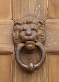 Vintage oriental knocker door of metal lion Royalty Free Stock Photography