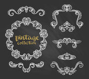 Vintage Ornamental Calligraphic Designs Set on the chalkboard. Vector illustration Stock Images