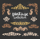 Vintage Ornamental Gold Calligraphic Designs Set on the chalkboard. Stock Images