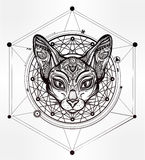 Vintage ornate cat head with tribal ornaments. Stock Image