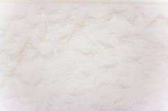 Vintage ou fundo branco sujo do cimento natural ou da textura velha de pedra como uma parede retro do teste padrão É um conceito Fotografia de Stock Royalty Free