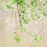 Vintage Painting Treetop Royalty Free Stock Image