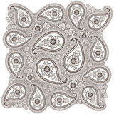 Vintage Paisley  lace  ornament or background Stock Images