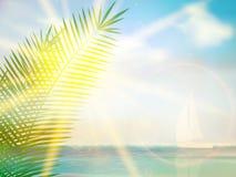 Vintage palm background design template. EPS10 vector illustration