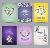 Vintage Pansy Flowers Card Set Stock Images