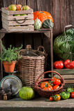 Vintage pantry with harvested vegetables and fruits. Closeup of vintage pantry with harvested vegetables and fruits Stock Image