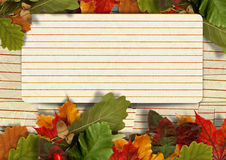 Vintage paper autumn background with maple leaves and  with postcard Stock Photos