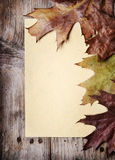 Vintage Paper and Autumn Leaves Royalty Free Stock Photography
