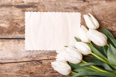 Vintage paper card with tulips on wood background Stock Photography
