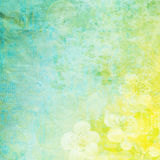 Vintage paper with flowers Royalty Free Stock Images