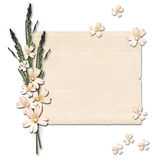 Vintage paper with a flowers Royalty Free Stock Image