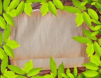 Vintage paper on green leave frame Royalty Free Stock Photos
