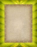 Vintage Paper on leaf Stock Images