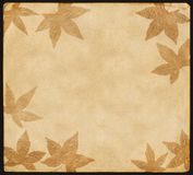 Vintage Paper with Leaves Stock Photos