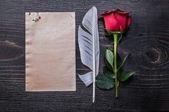 Vintage paper red natural bloomed rose plume on Stock Image
