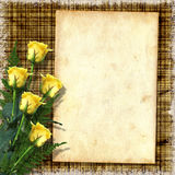 Vintage paper with a roses Royalty Free Stock Images