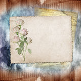 Vintage paper with a roses Stock Image