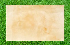 Vintage paper texture for background. Stock Photography