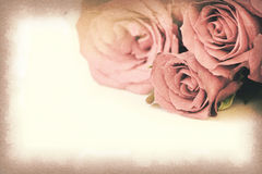 Vintage paper texture, Pink roses bouquet with space for text Stock Images
