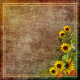 Vintage Paper With Flowers Royalty Free Stock Photos