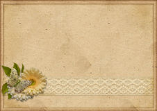 Vintage paperboard background with gerbera and lace Stock Images