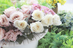 Vintage pastel color style of white roeses flowers bouquet arran Royalty Free Stock Photo