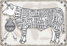 Vintage Pastel Page of Cut of Beef Stock Images