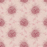 Vintage pattern with peony drawing Stock Image