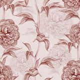 Vintage pattern with peony drawings Stock Image
