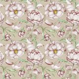 Vintage pattern with peony Stock Images