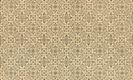 Vintage patterns. The pattern on antique paper Royalty Free Stock Photos