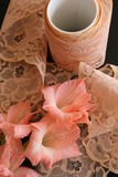 Vintage peach-colored lace Stock Image