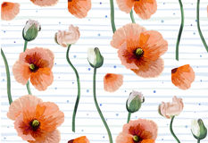 Vintage peach red poppy beautiful soft flowers, buttons backgrou. Nd, blooming seamless wallpaper botanical floral fine design watercolor style illustration for Royalty Free Stock Photography